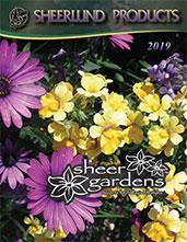 spring-catalog-2019