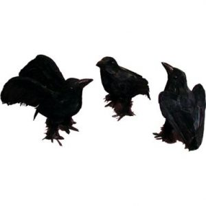 6″ Black Crows