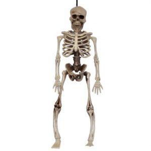 14″ Hanging Skeleton