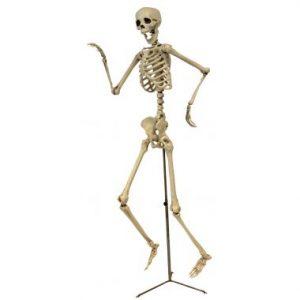61″ Posable Skeleton