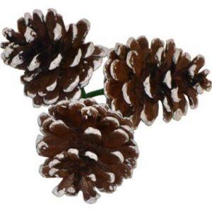 Small Triple Pine Cone w/ White Tip 2″