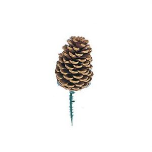 Medium Pine Cone w/Pick 3.5″