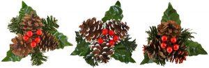Triple Cone / Berries / Leaves