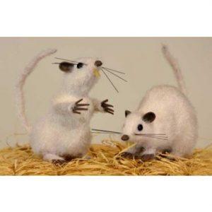 6″ White Mice