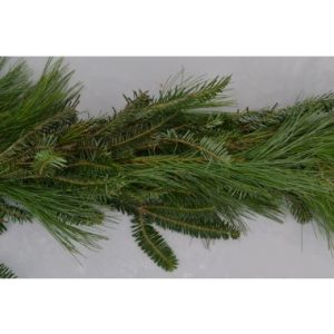 White Pine/Fraser Fir Mixed Roping