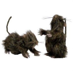 5″ Hairy Rats