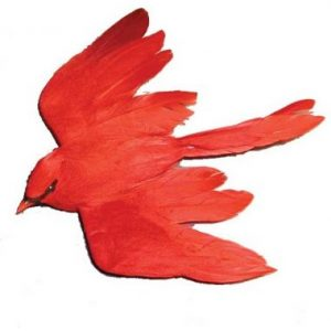 Cardinal 6.5″ Flying